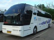 Пассажирские перевозки. Комфортабельные микроавтобусы. Автобусы.