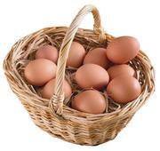 Продаю домашние куриные яйца - недорого