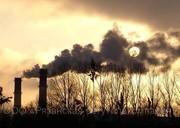 Принимаем биоотходы в Рязани
